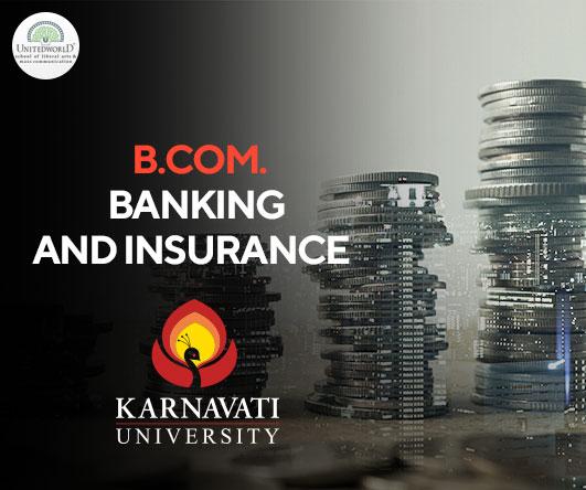 B.Com. (Hons.) Banking and Insurance Image